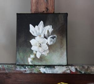 Grayton flowers
